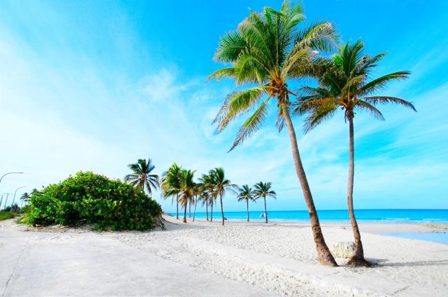 VIAJES A CAYO SANTA MARIA Y LA HABANA DESDE ARGENTINA - Cayo Santa Maria  / La Habana /  - Buteler en el Caribe