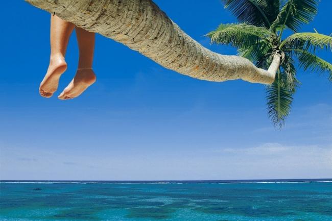 VIAJES A MIAMI Y PUNTA CANA DESDE ROSARIO - Buteler en el Caribe